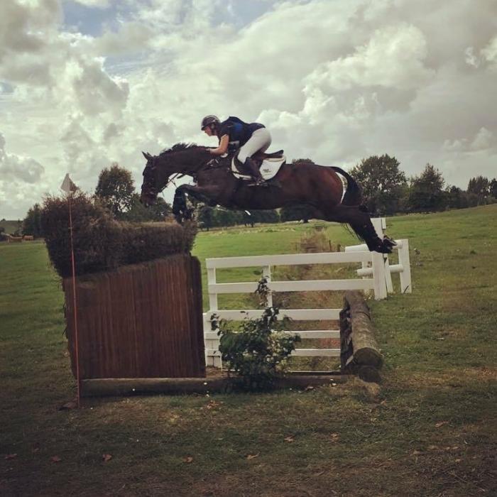 Top New Zealand 3* Horse