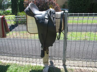 Rogan saddle