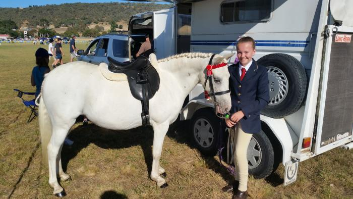 Pintaloosa Pony Mare, 8 Years Old, 12.2hh