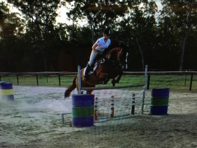 Jumping1.3m
