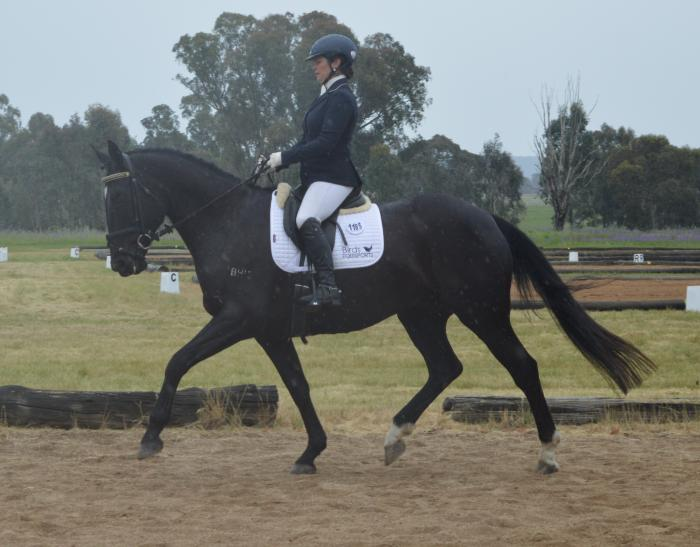 Lovely Nature- Elementary dressage / eventer