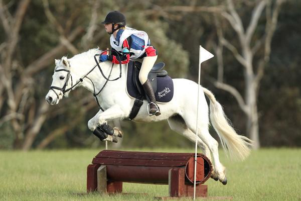 Competitive showjumper, Eventer, Pony Club