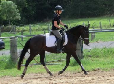 Elle 2012 under saddle