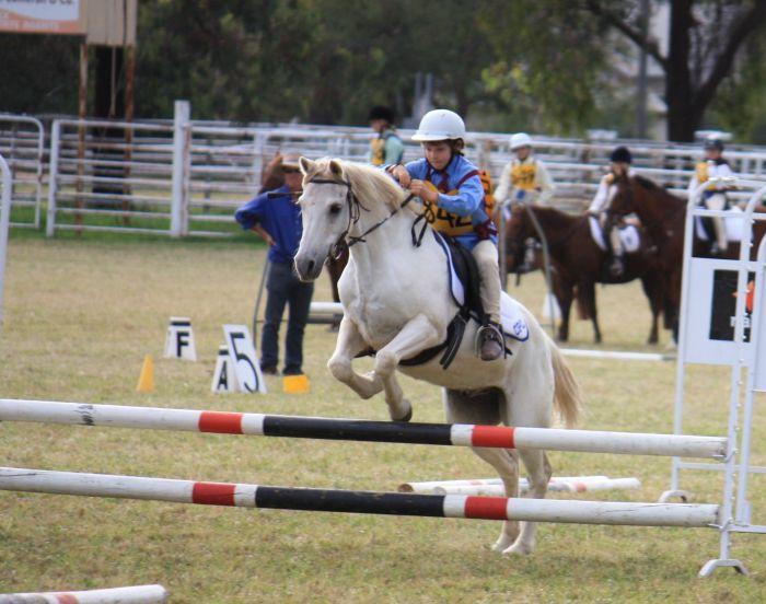 Casper the friendly pony