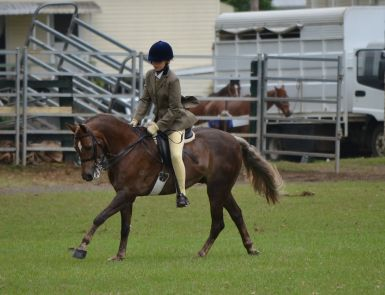 Hunter class 2012