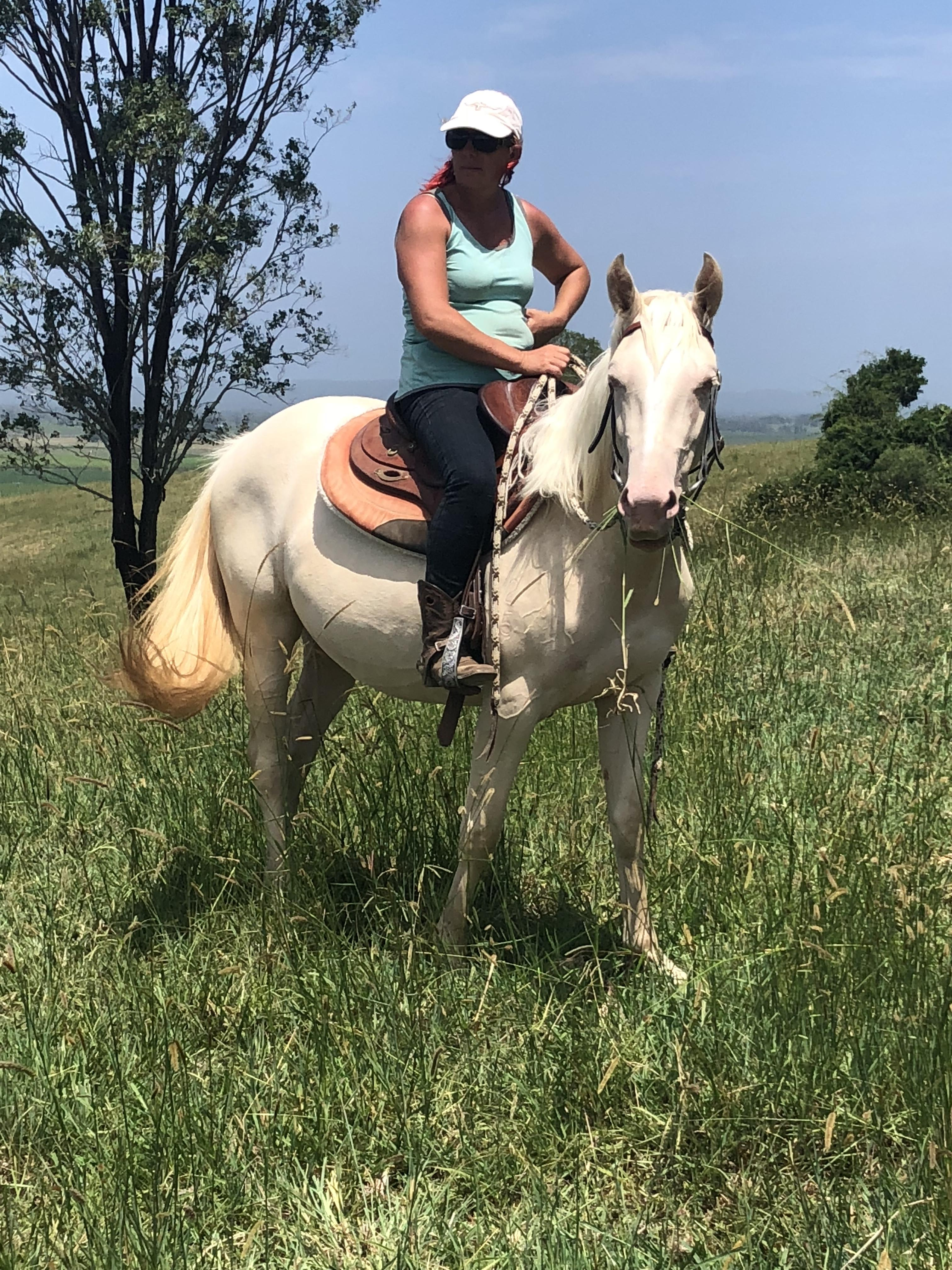 QH Cremello Filly