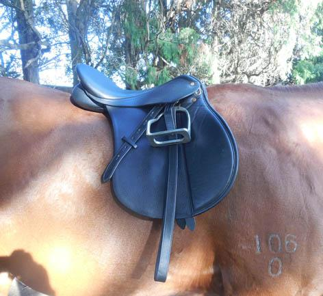 Bates AP saddle