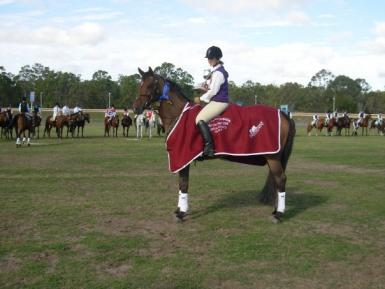 Summer at State Eventing 2009