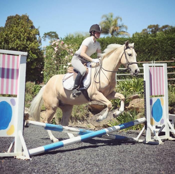 Your Dream Pony, 14.1hh Palomino Gelding
