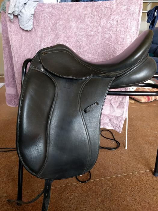 Pessoa Pds Euro Dressage Saddle Dressage And Show