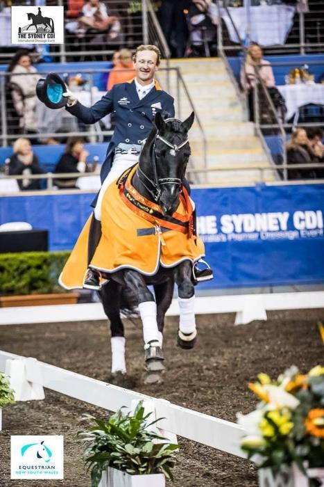 Grand Prix destined black weanling colt
