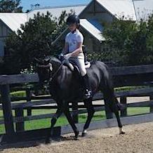 Fun, Competitive Pony