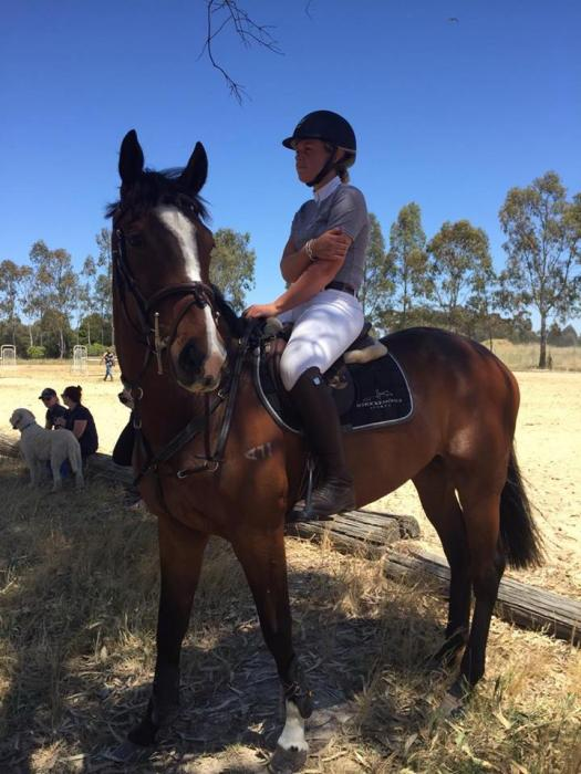 Great Natured TB ready to step up and Perform