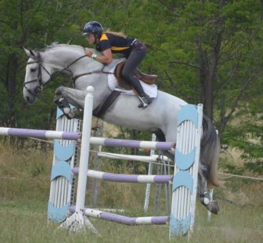 Canberra Showjumping