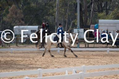Rodeo Dressage- Felicity Clay Photography