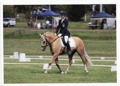 Novice Pony champion canberra classic