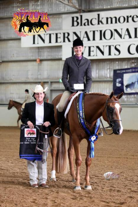 National Champion QH Gelding - price reduced