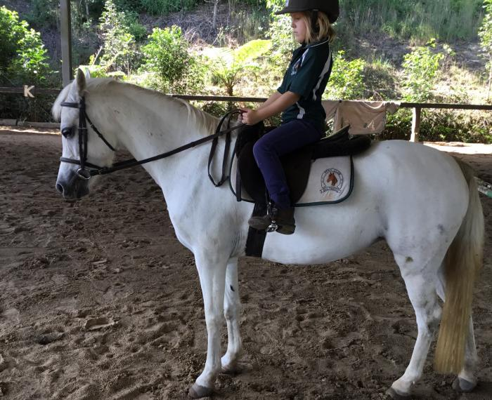 A beautiful pony showing huge potential.