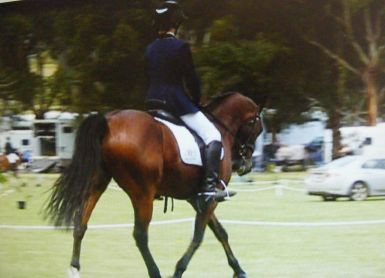 Camperdown CIC*