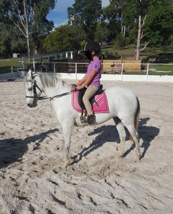 Leadline Schoolmaster Show pony