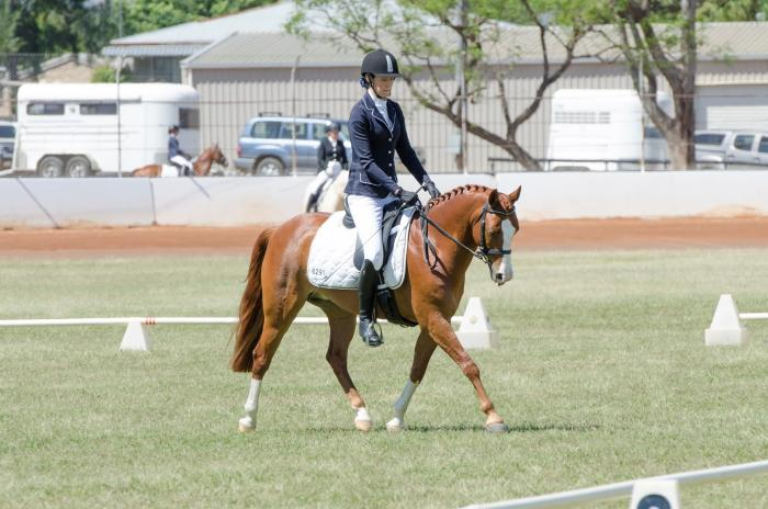 Upcoming Pony Dressage STAR