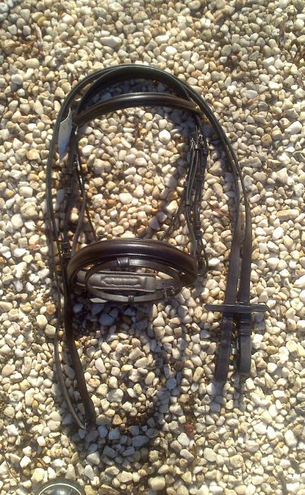 Brown Ambassador Bridle BRAND NEW