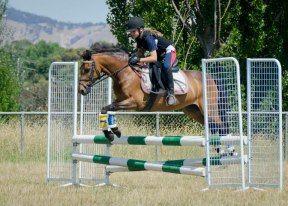 Jumping Training
