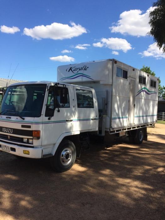 Isuzu FSR Dual Cab Family Horse Truck