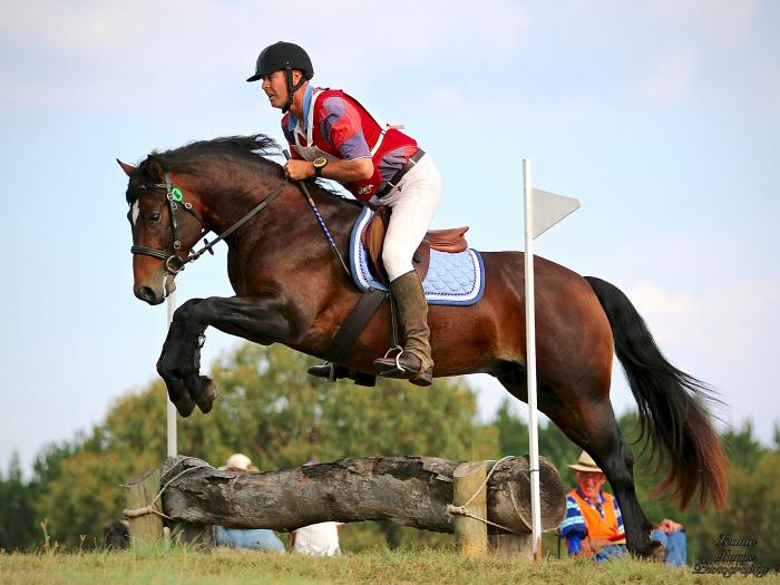 Breed your future Eventing prospect