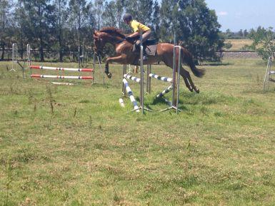 Jump Practice 1