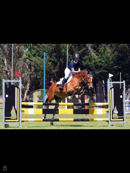 Super jumping 15 hander