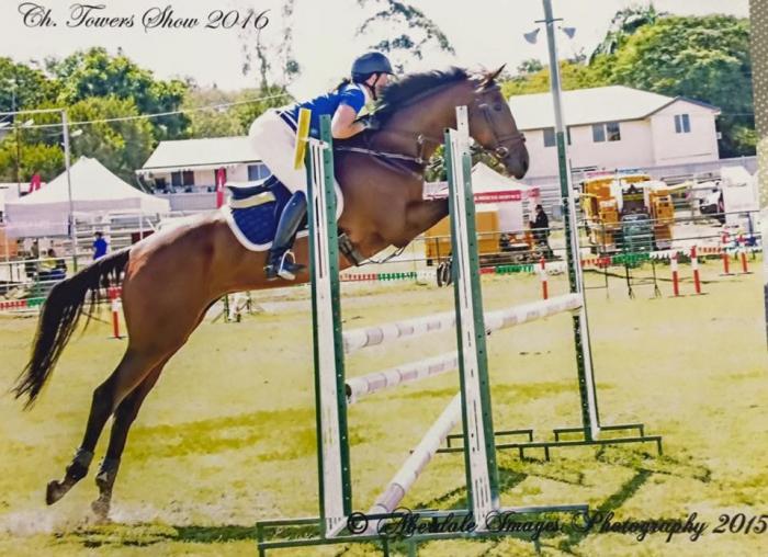 Showjumper 115m EFA Great Interschool horse