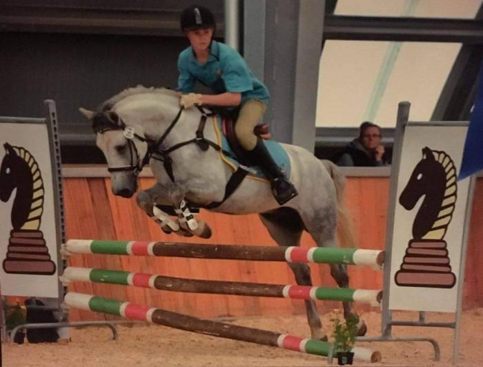 9yo 14hh Connemara- Fun & competitive pony!