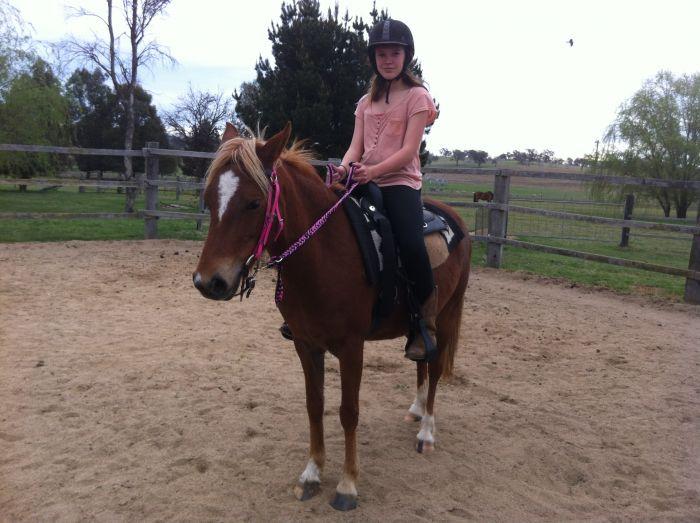 A great pony