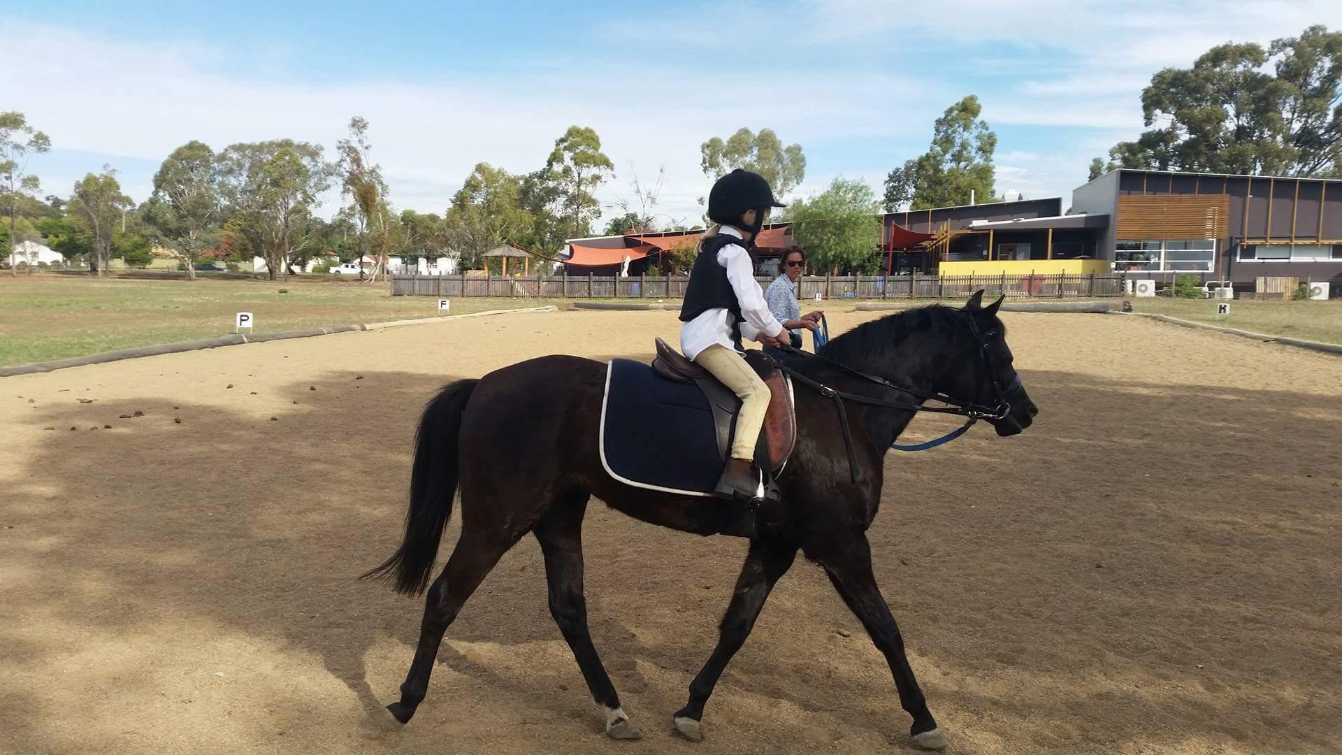 Black mare 12.2hh 10yr old 4 regos