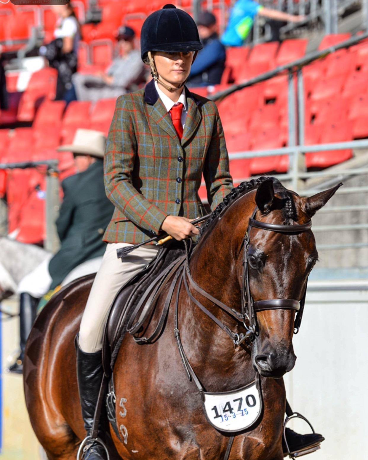 Stunning Warmblood -Qualified for Melbourne Royal and Ekka