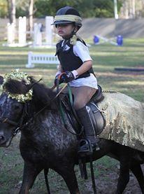 BOOMBPROOF 10'2 hh AMAZING pony