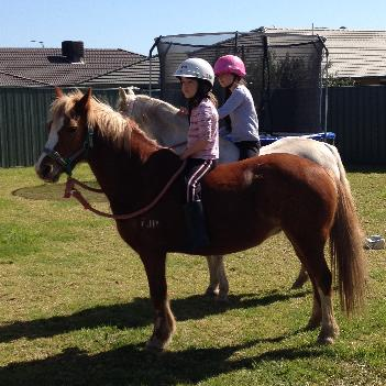 Twinkles doesn't live in our backyard just brought the two horses up for the day so girls for