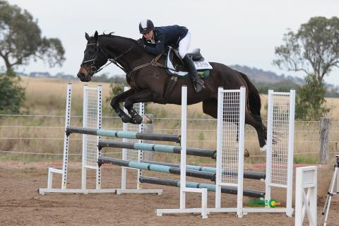 Allrounder that excels at all disciplines