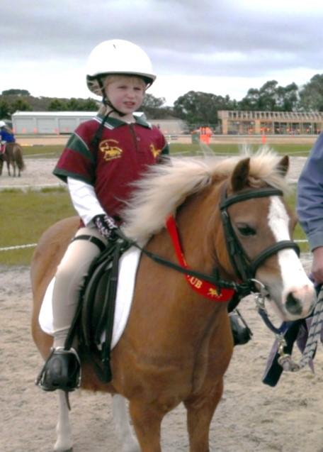 Registered Welsh A - perfect 1st pony