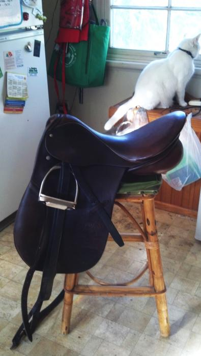 Eventing package 2 quality 18in Stubben saddles