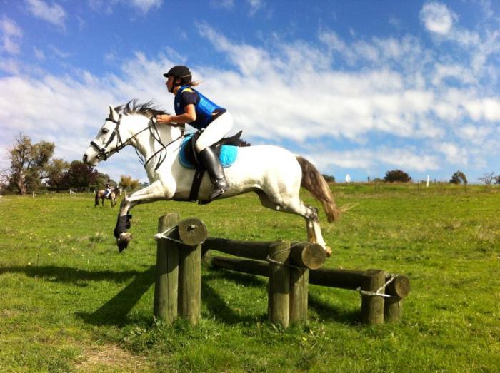 Ripper pony - Jumping star