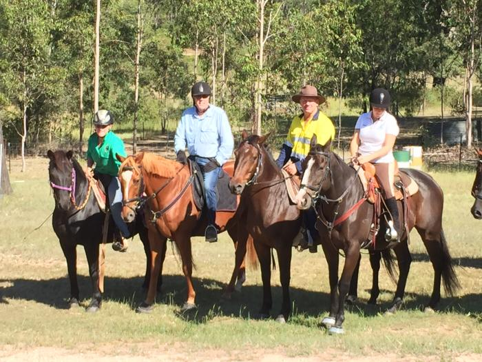 Pony Club, trail ride and allrounder
