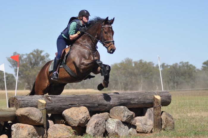 Consistent Performer- Pre-Novice Eventer