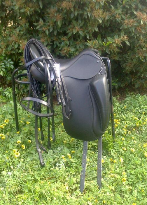 "PDS Pessoa 16"" Dressage Saddle BRAND NEW + Bridle"