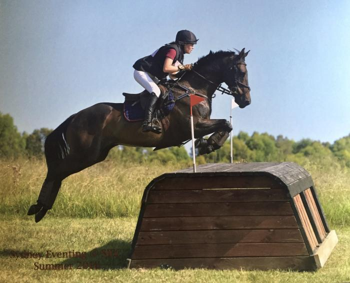 Experienced Eventer and Interschools Mount