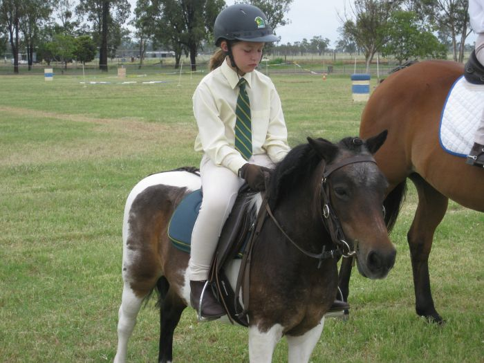 Small Childs First Pony