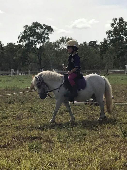 Perfect Kids Pony