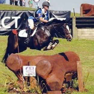 WOW - 3* EVENTER/PERFECT YOUNG RIDER