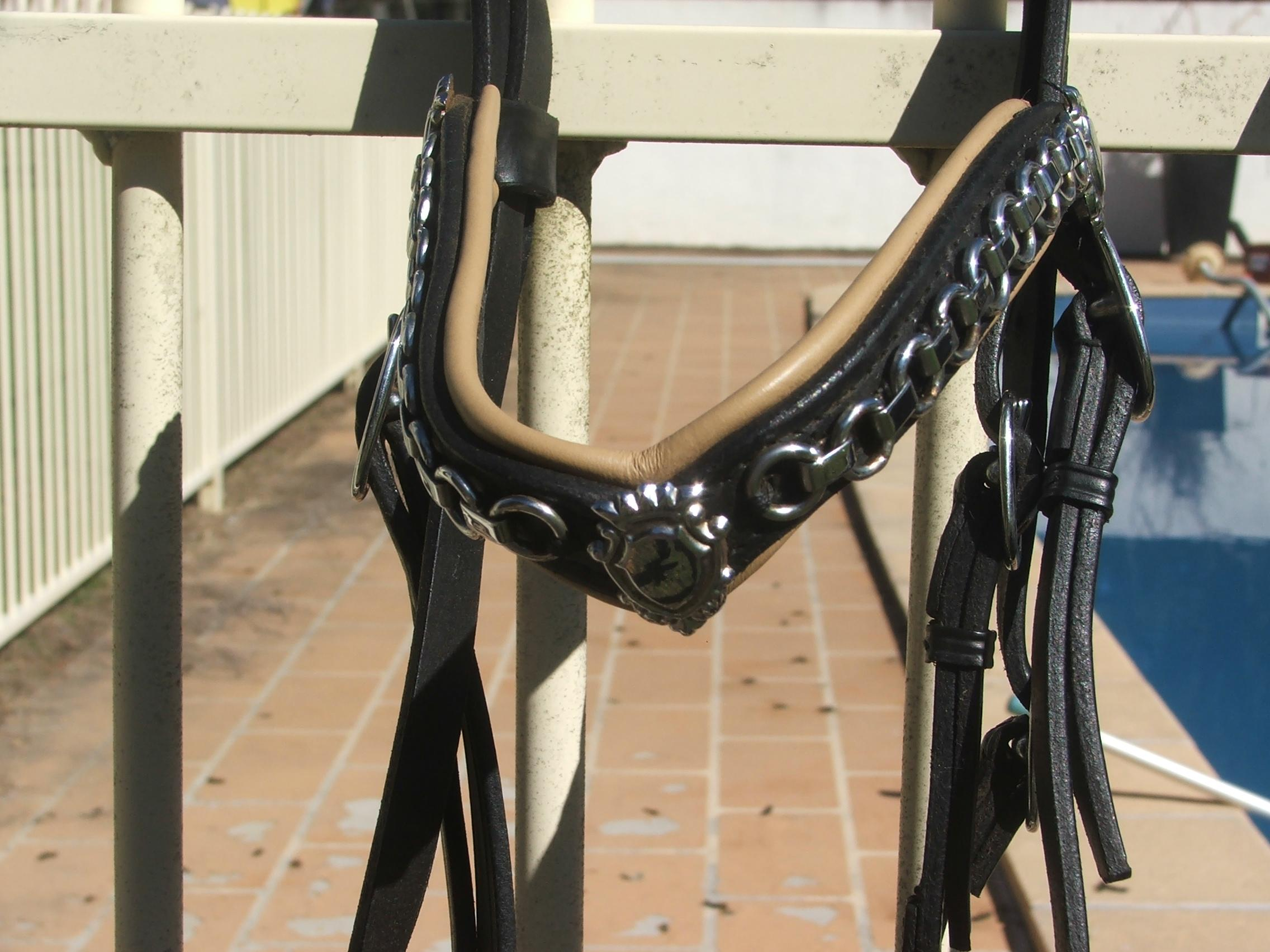 Wagners BRIDLE